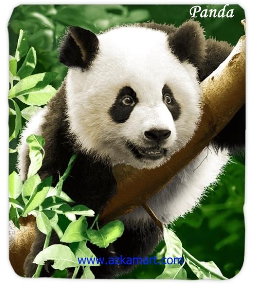 jual grosir online Selimut Kendra Panda