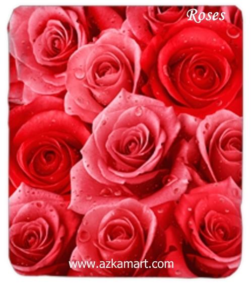 jual grosir online Selimut Kendra Roses