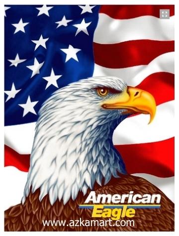 jual selimut grosir murah Amerika Eagle